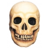 Skull Prop Large
